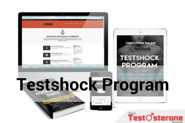 testshock-program-review