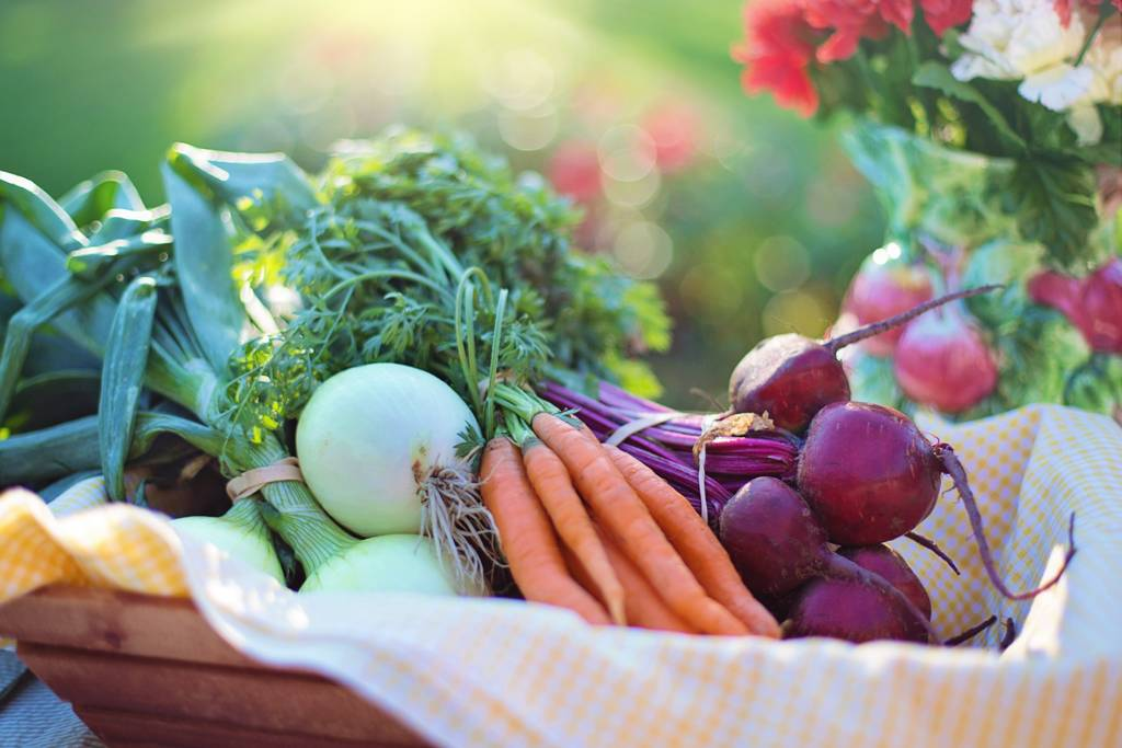 foods rich in nitrates