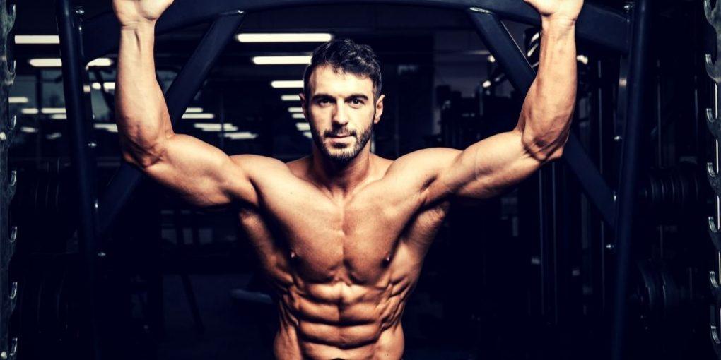increase androgen receptors